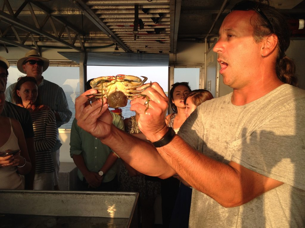 Chris Paparo Holding a pregnant blueclaw crab.