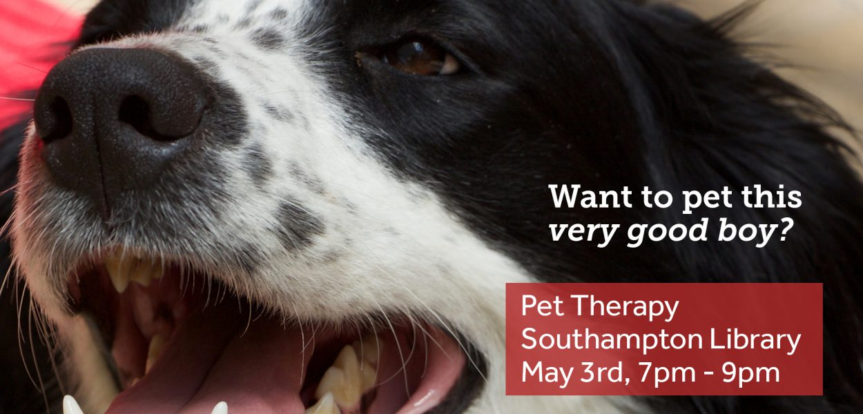 Pet Therapy at Southampton Library