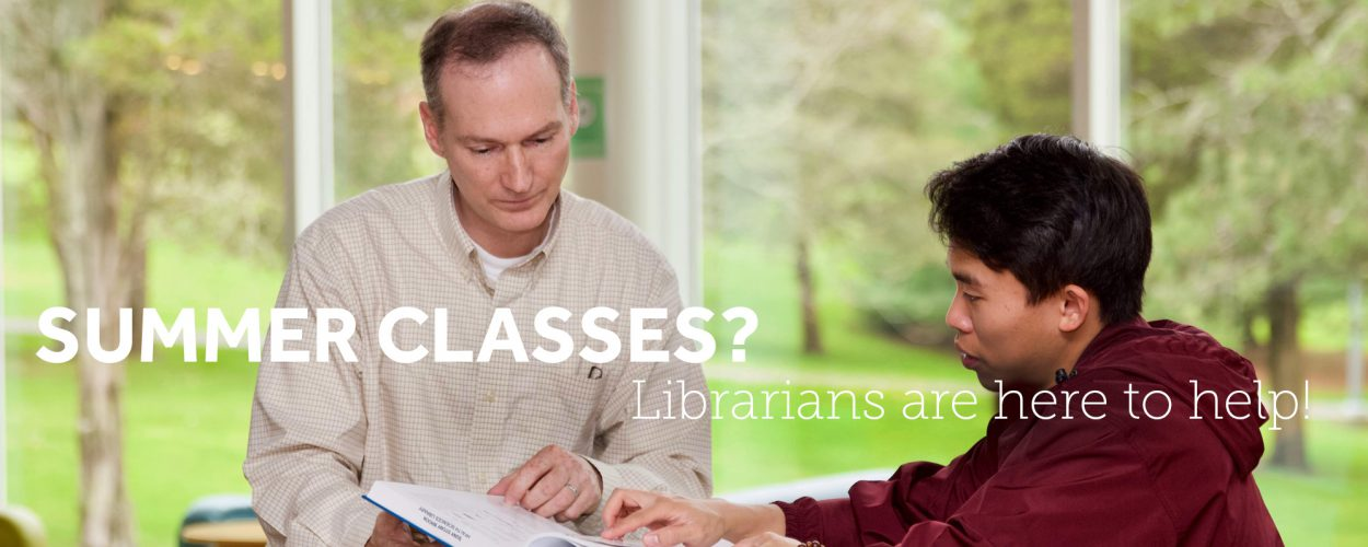 Summer research consultations with a librarian