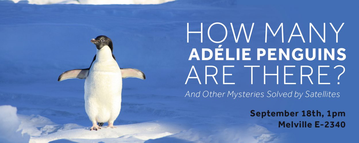 STEM Speaker Series -- How many adelie penguins are there?