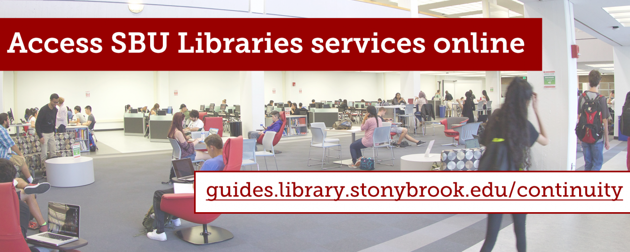 Access Libraries services online