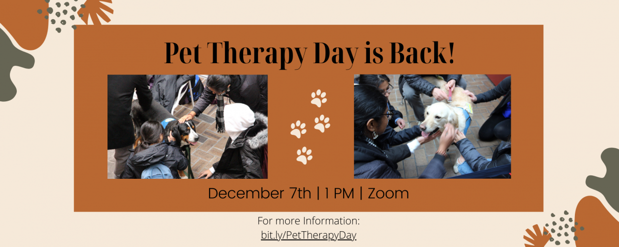 Pet Therapy Day is back!