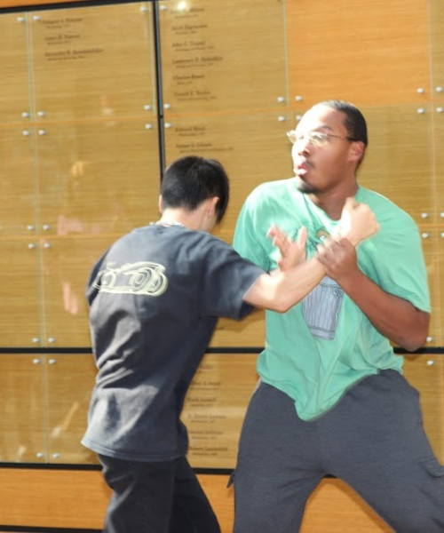 Two students demonstrating martial arts tricks in Melville galleria