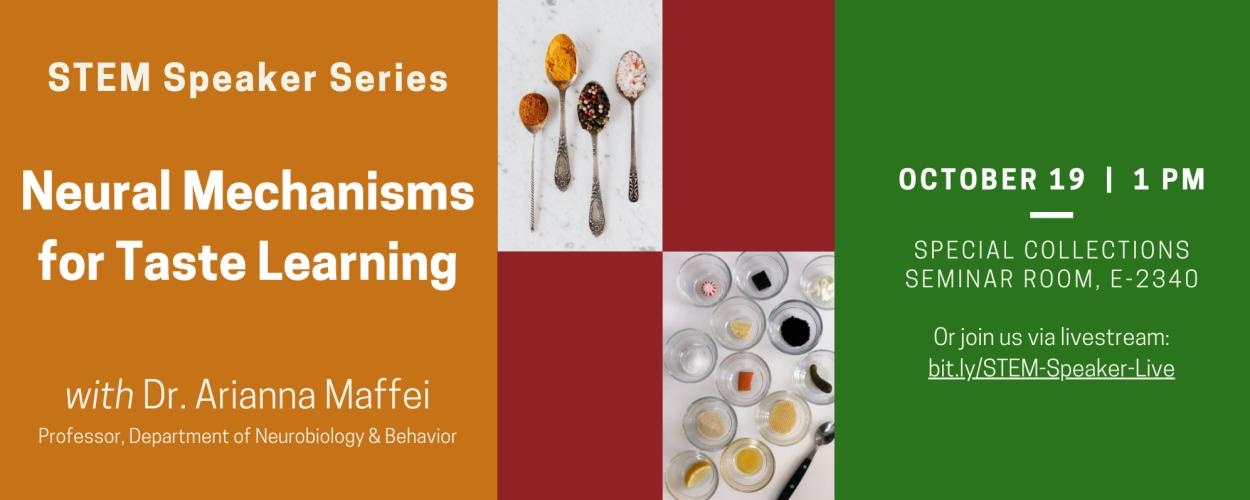 STEM Speaker Series: Neural Mechanisms for Taste Learning with Dr. Arianna Maffei, Professor, Department of Neurobiology and Behavior